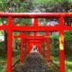 【令和元年の御朱印】北海道・札幌のオススメ神社8社!新元号の限定版もある!?